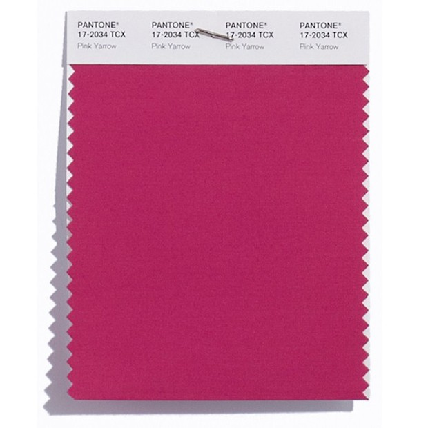 pantone-cor-da-primavera-pink-yarrow