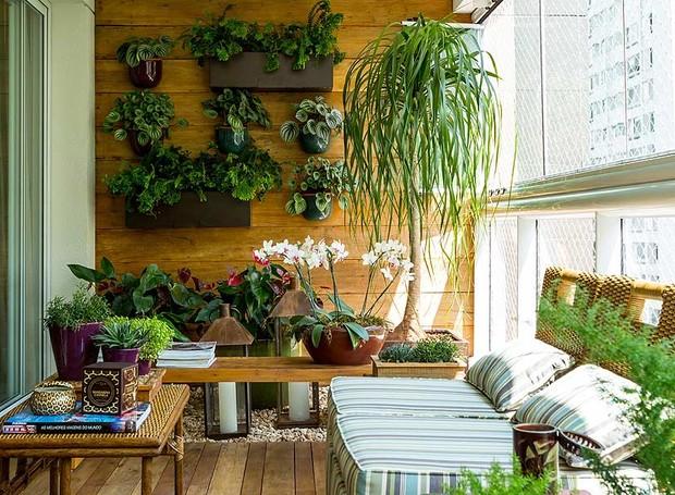 Jardim no cimento: Cultivando plantinhas dentro do seu apê