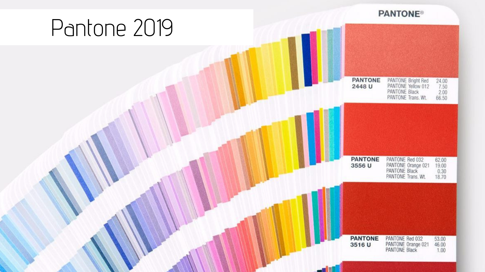 Pantone 2019: as cores tendência do ano que vem